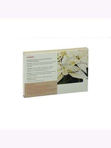 NemaPlus SF (25 Mio für 20qm) + Nema-Quick (50 ml) Kombi-Packung SF Nematoden zur Bekämpfung von Trauermücken - 4